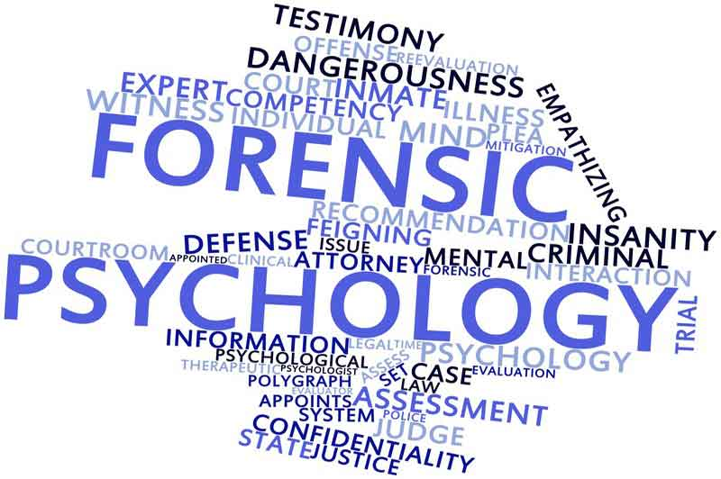 Forensic psychology Chicago image