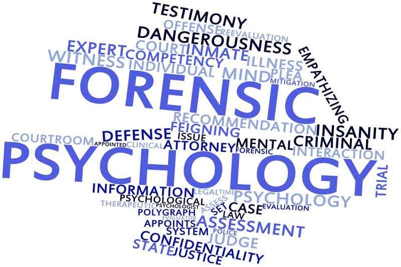 Forensic psychology Chicago image