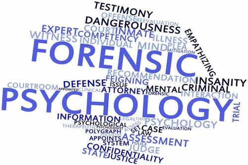 forensic psychology testing image